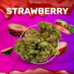 Strawberry CBD weedzy