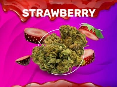 Strawberry CBD weedzy