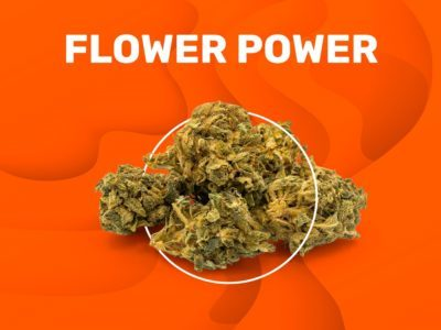 FLOWER POWER CBD flowers