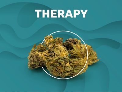 THERAPY CBD Flowers
