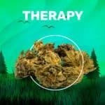 Therapy CBD weedzy