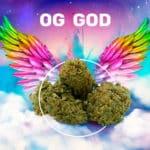 OG GOD CBD