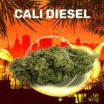 Cali Diesel Weedzy