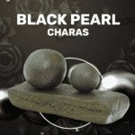 Black pearl charas weedzy